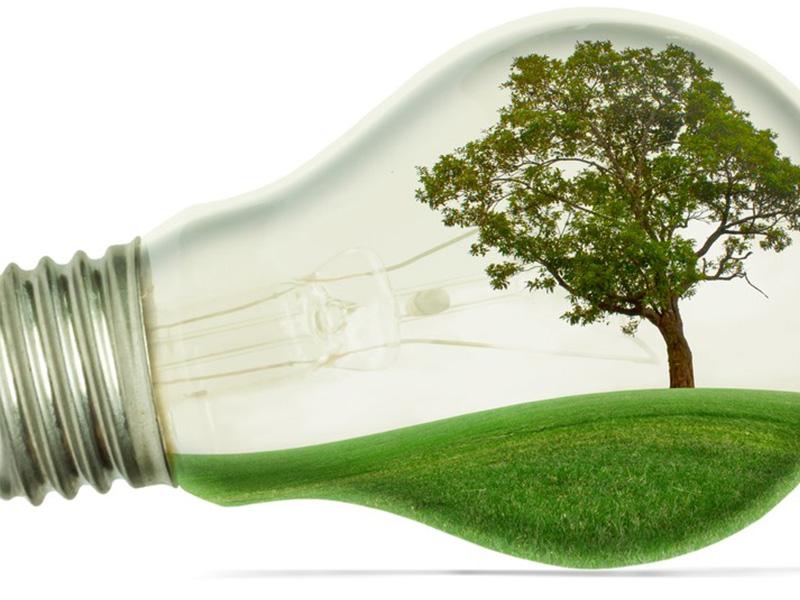 duurzaame-groeme-verlichting