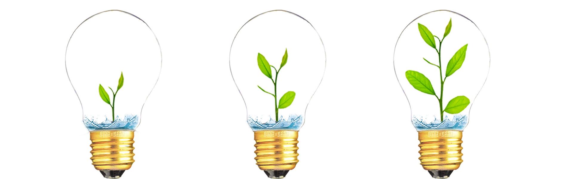 led-duurzeme-groene-verlichting-faq